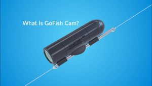 GoFish Cam Provides a Fish Eye's View of the Water